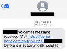 A text message that reads 'Voicemail message received. Visit pomu-haha.com before it is automatically deleted.' Some details such as the full address are blocked out.